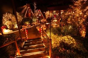 Cerca de 90 mil luzinhas compõem a magia do local - Crédito: Vladi Fernandes